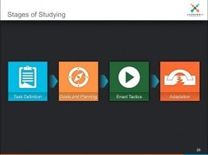 Stages of Study